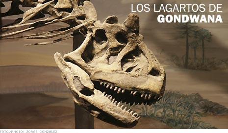 Presentamos los hallazgos fósiles más importantes que tuvieron lugar en Argentina: